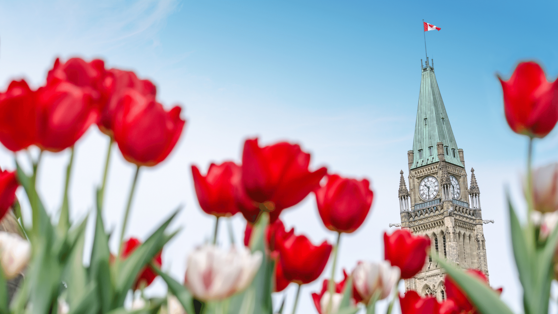 Canada Announces New Travel Rules